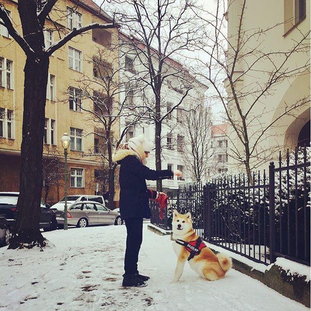 Check us out on : https://m.facebook.com/hugapet.de/?ref=aymt_homepage_panel Mit Hug a Pet, nie wieder zum Tierärztliche Klinik #witzig #witzigebilder #austria #katze #süss #dog #hunde #cat #catsofinstagram #reisenmitkindern #family #cats_of_instagram #dogsofinsta #dogsofinstgram #berlin #Xberg #hauptstadthund #instahund #strassenhund