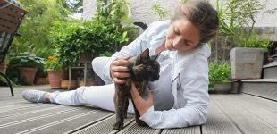 Dr. Janine Sommer | Tierärztin Partner