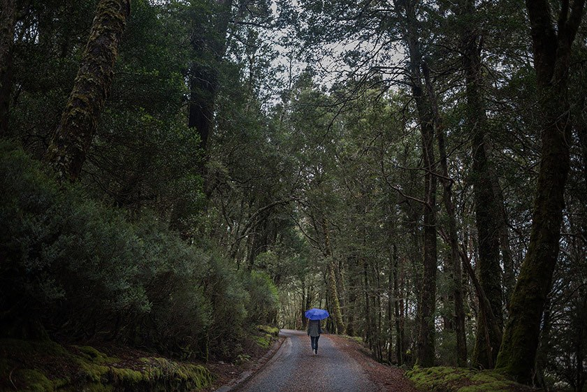 Gabriel-Veit-Tasmania-019.jpg