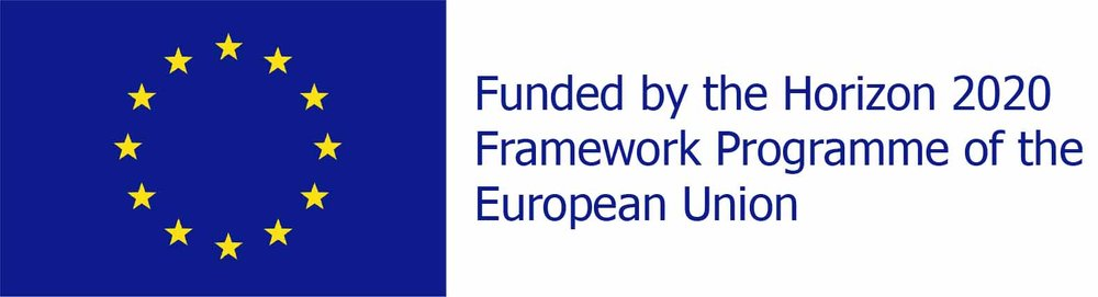 eu_logo_H2020.jpg
