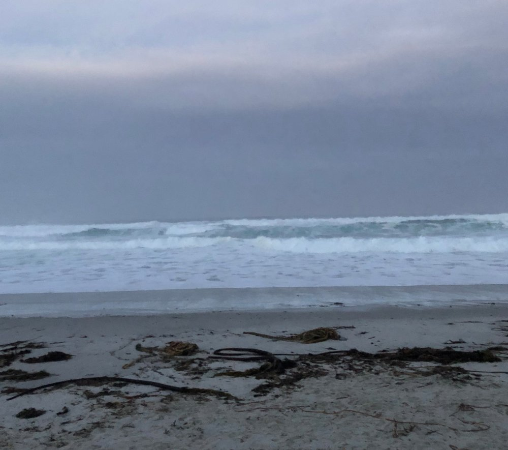 """Asilomar State Beach and Conference Grounds ( link ) home base for the One Idea Away """"Uncover"""" Retreat last weekend."""