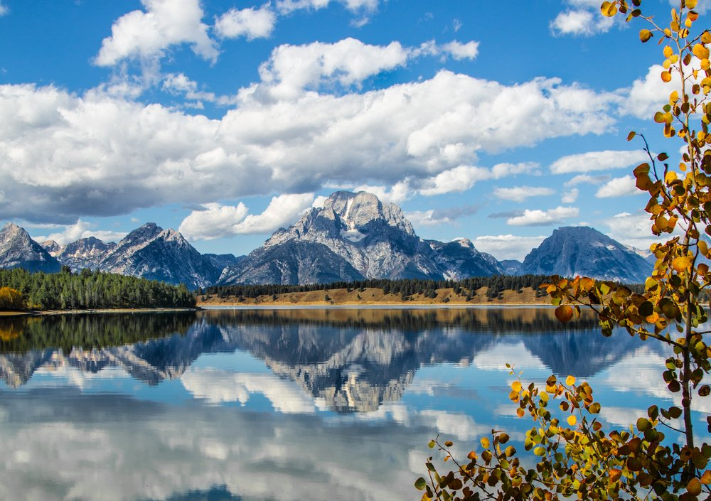 Jackson Hole | Chicago Wedding Planner |Honeymoon Destination