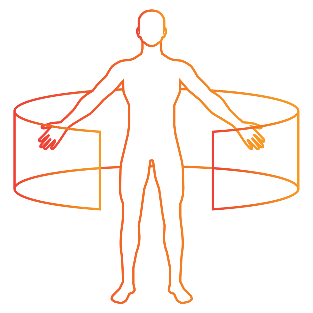 Anatomy Training Icon by ImmersiveTouch