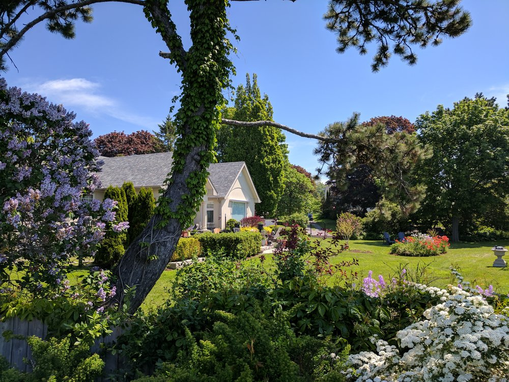 A view of Willowmere's garden, Cobourg waterfront bed and breakfast.
