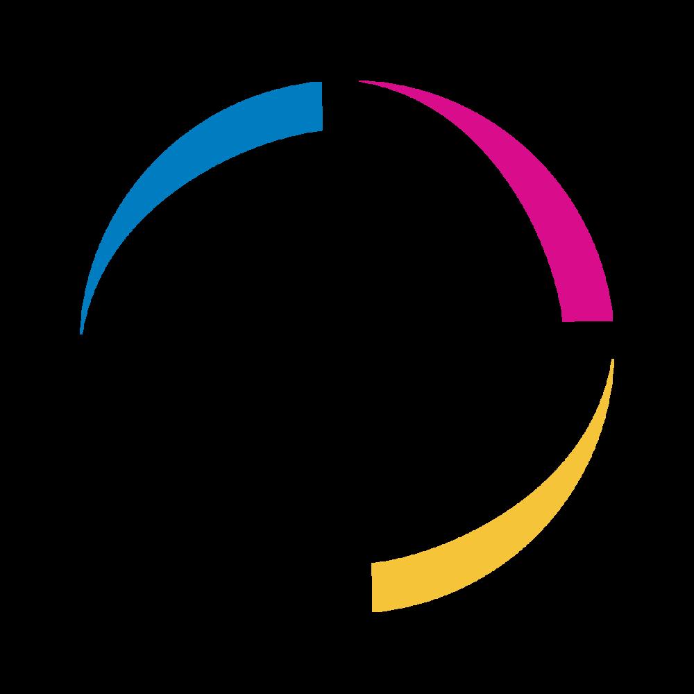P_Logo-01.png