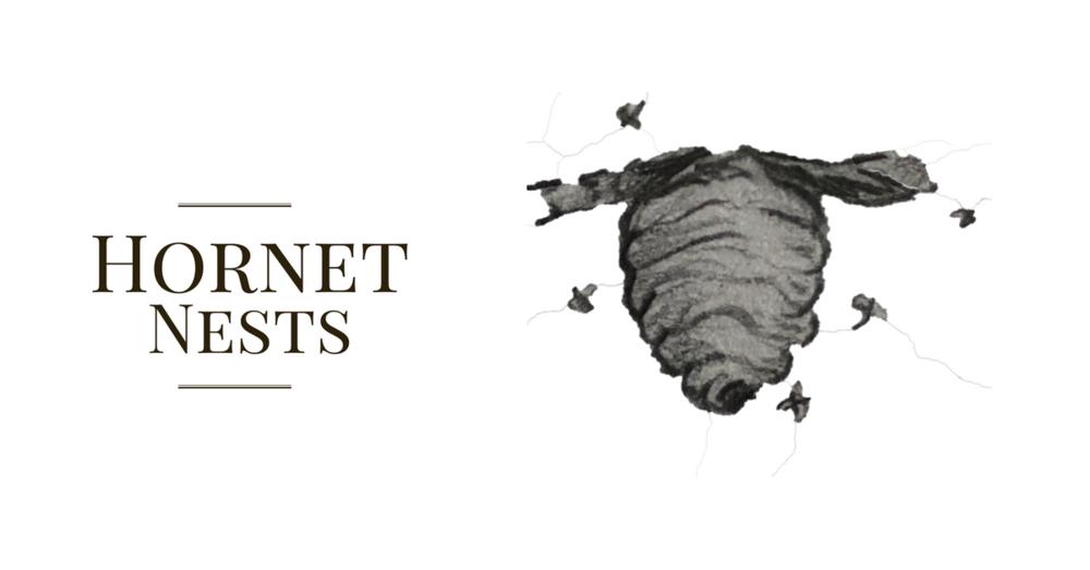 Hornet Nest.png