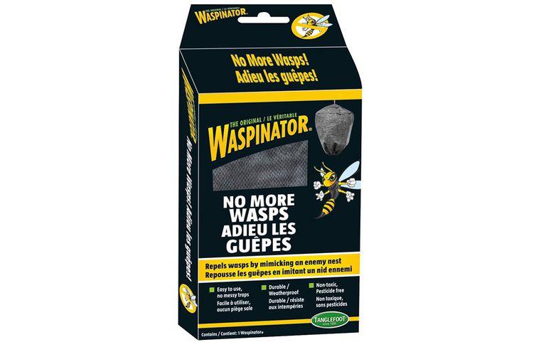 wasps-prevention-1000-1505655361.jpg