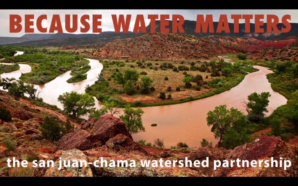 Because Water Matters SJCWP.png