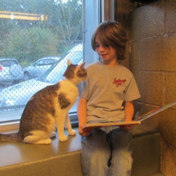 Book Buddies - Book Buddies is an educational program for students in grades 3 to 6 who are struggling readers. Children can improve their reading and fluency skills in a non-judgmental environment by reading to cats. Cats are great listeners! Students must read for at least 20 min. and may stay another 25 min. to hang out with cats. Bring a book or choose one from our Library. Parent/guardian remains with their child during Book Buddies time.