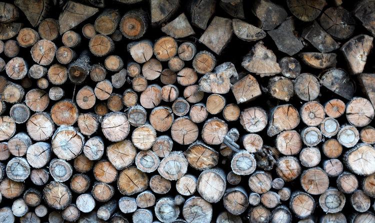 woodsheed.jpg