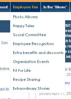 """Employee fun"" is a top-level navigation item"