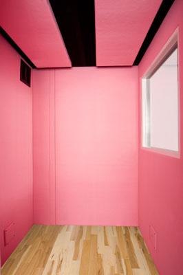 Pink Interior VocalBooth