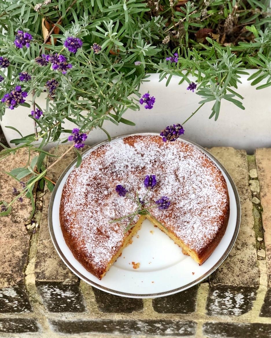lavanda torta.jpg