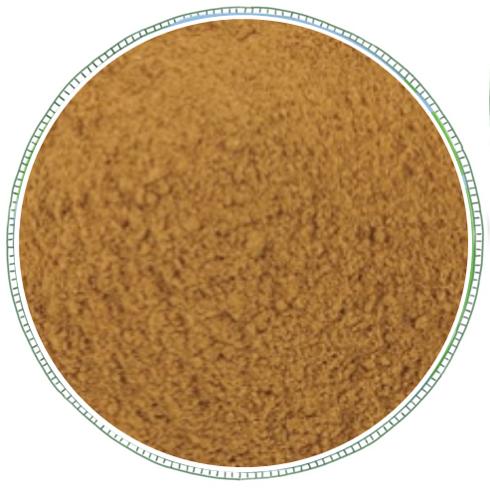 Ground Cinnamon -