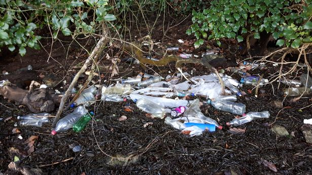 cornwall river plastic pollution.jpg