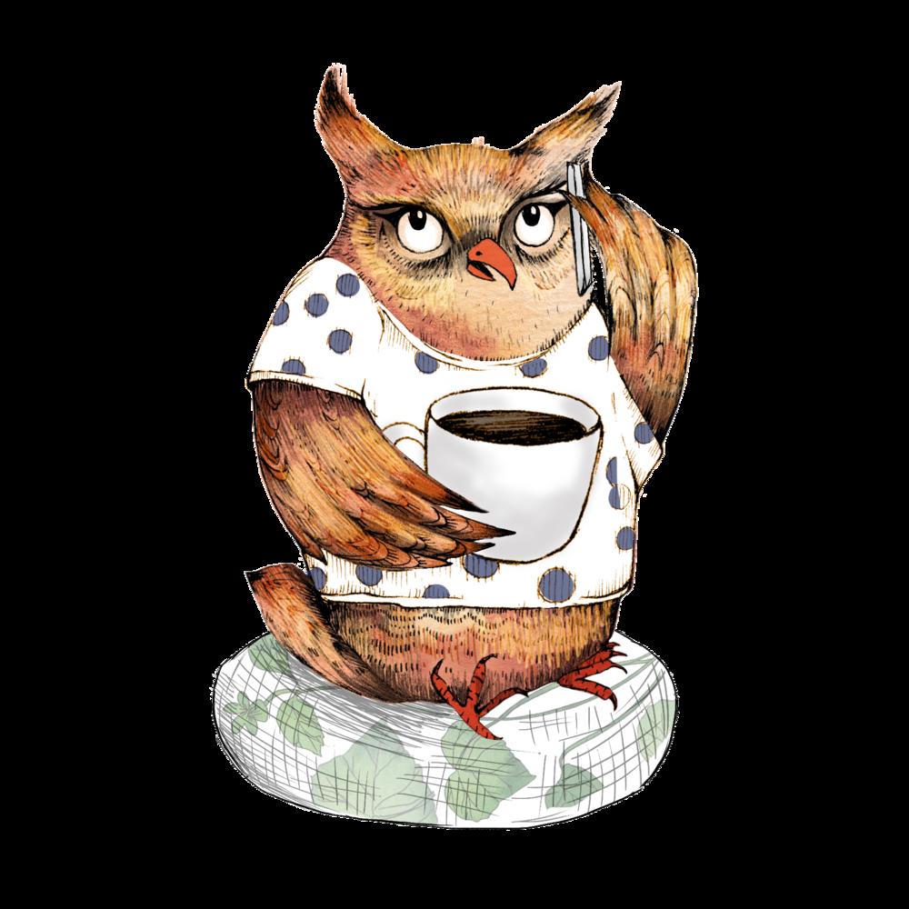 Cara the Coffee Owl