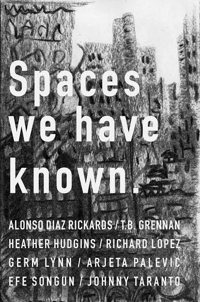a brief history of american literature gray richard