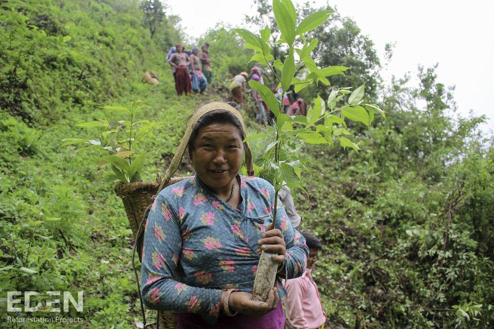 Nepal_2018_Nawalparasi_Nursery director Bhima Sharu leading the plantation activities.jpg