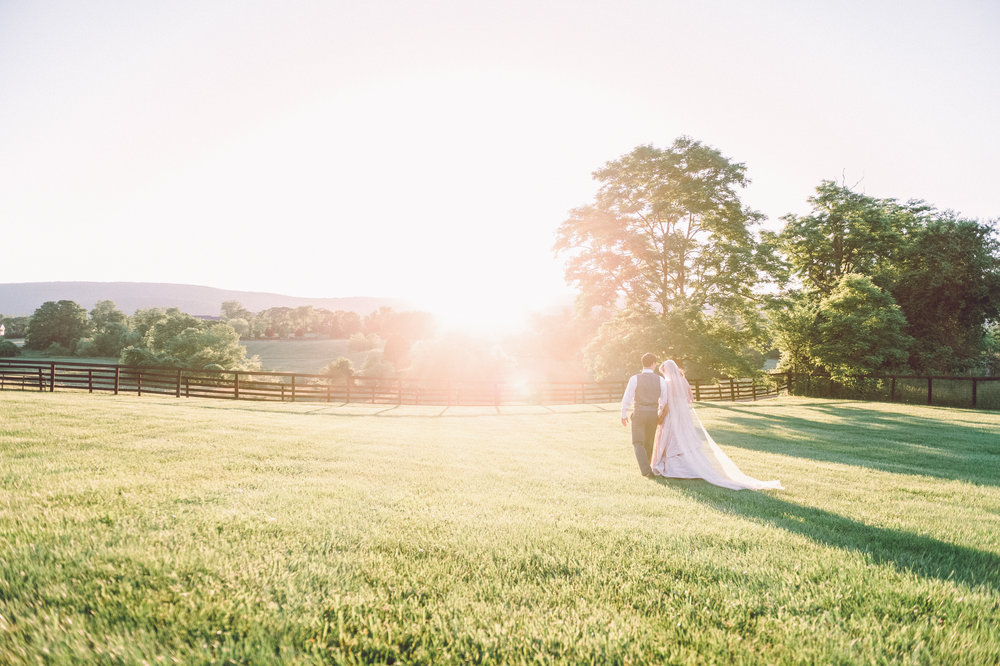 Steffi & Greg | Photography Du Jour