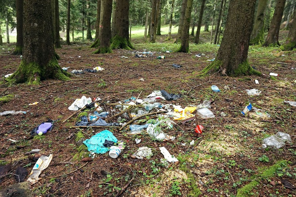 Multi-colored trash items on a forest floor surrounded by trees.