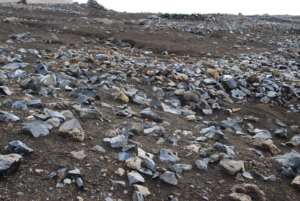 A field of obsidian stones on brown volcanic soil.