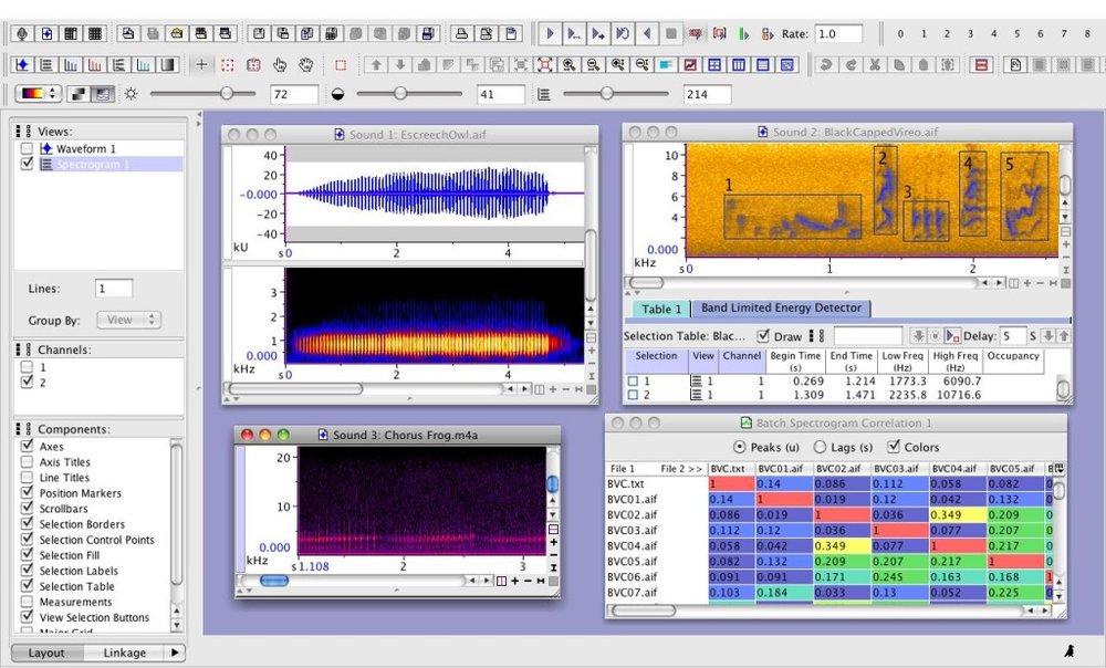 Raven-Pro-display.png-1024x619.jpg