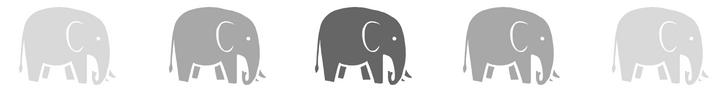 Elephant Banner.jpg