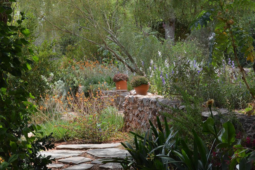 Garden at Sparoza