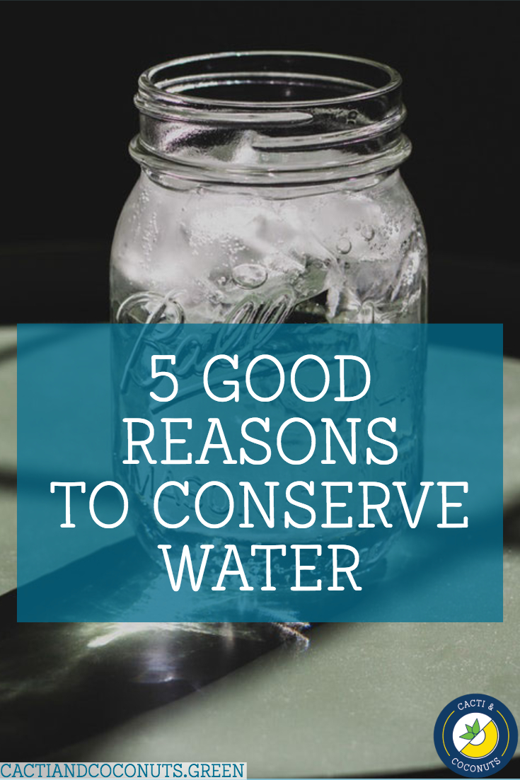 5 Good Reasons to Conserve Water