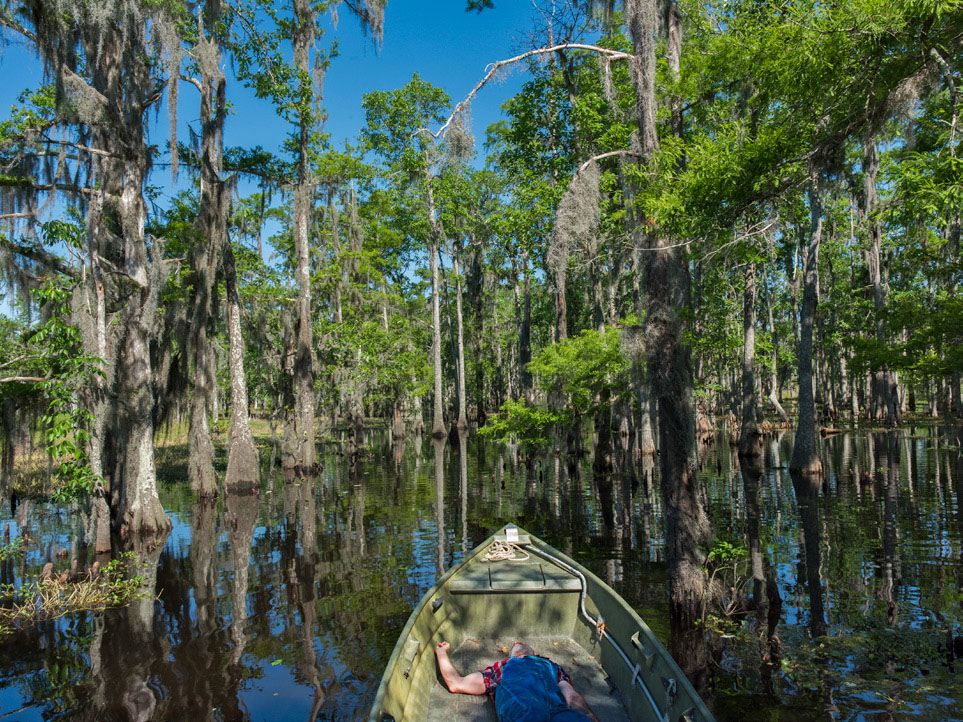 NIGHT-OF-THE-HUNTED-Louisiana-Swamp.jpg