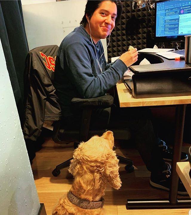 Office dog goals!