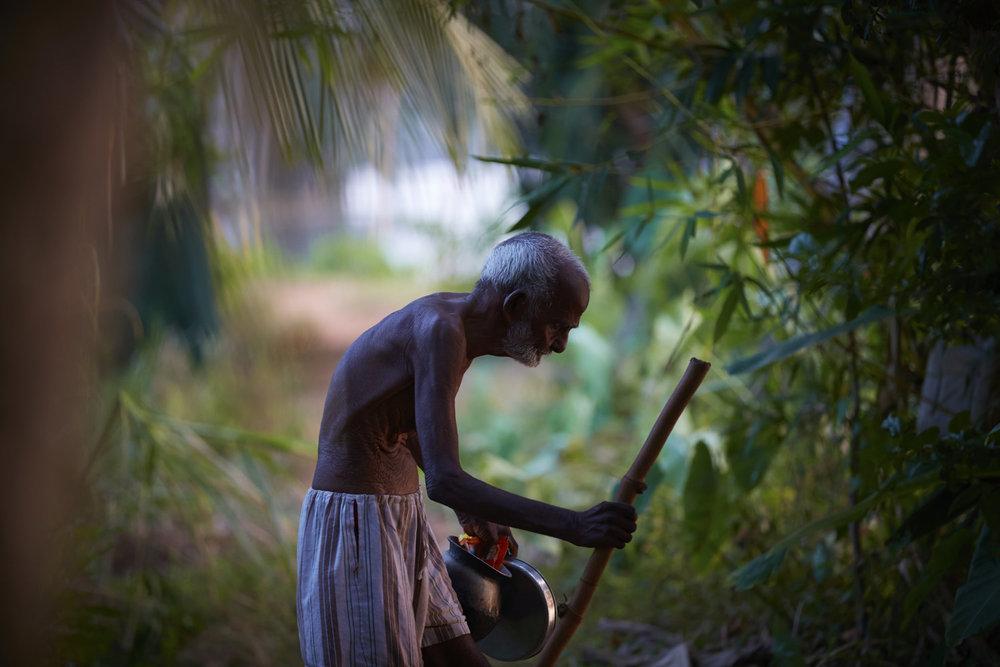India_2016_IMG_8343.jpg