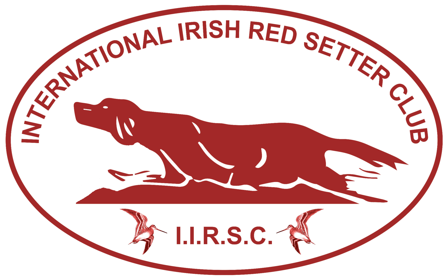 International Irish Red Setter Club