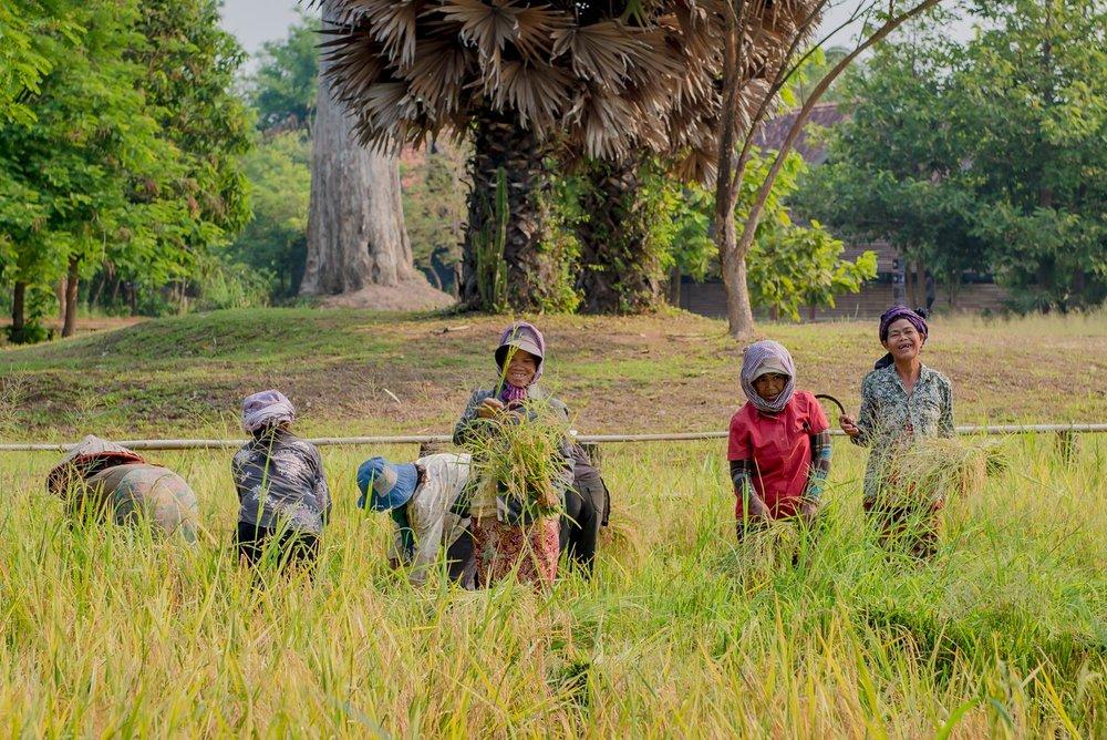 Cambodia Portfolio  (12 of 106).jpg