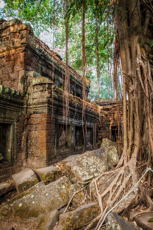 Cambodia Portfolio  (57 of 106).jpg