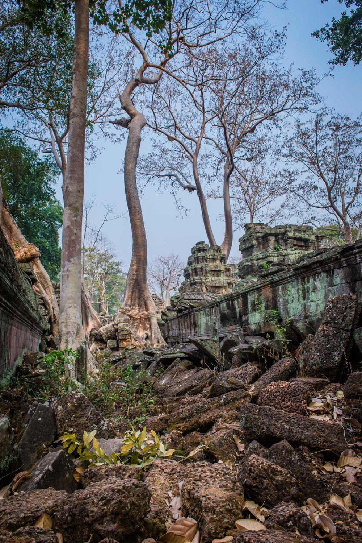 Cambodia Portfolio  (58 of 106).jpg