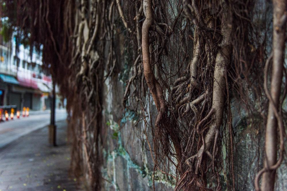 Hong Kong Street Photography_-5.jpg