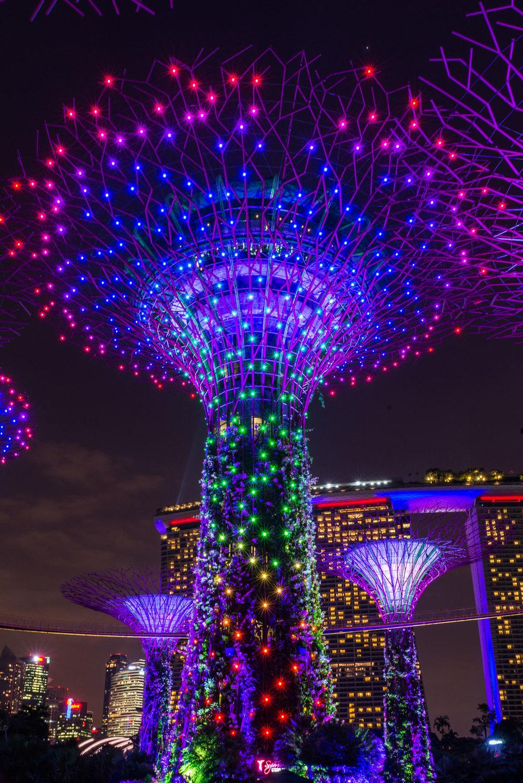 Singapore Portfolio  (11 of 54).jpg