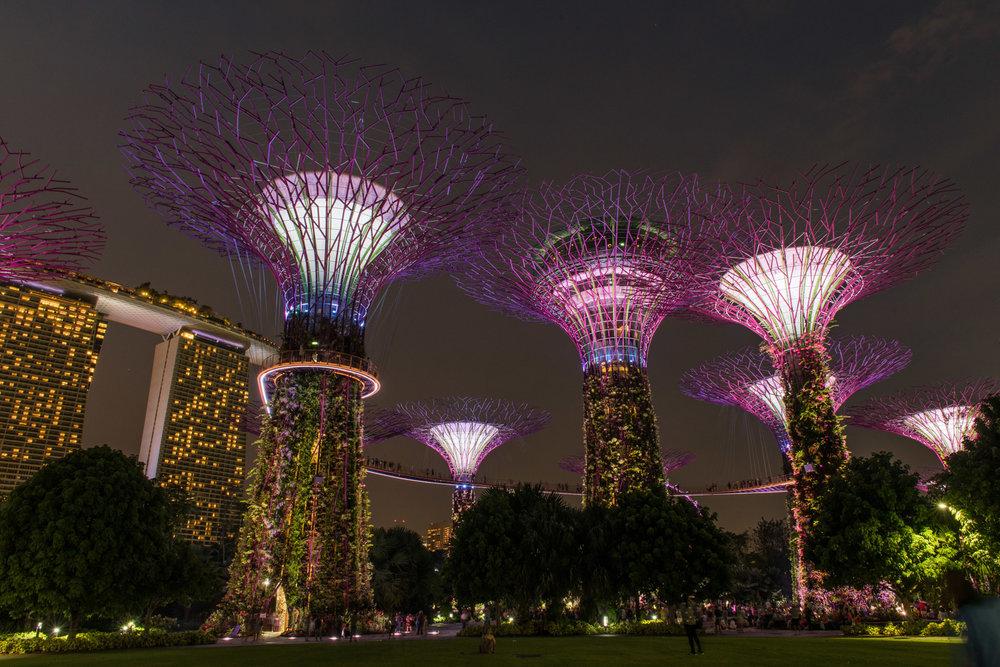 Singapore Portfolio  (40 of 54).jpg
