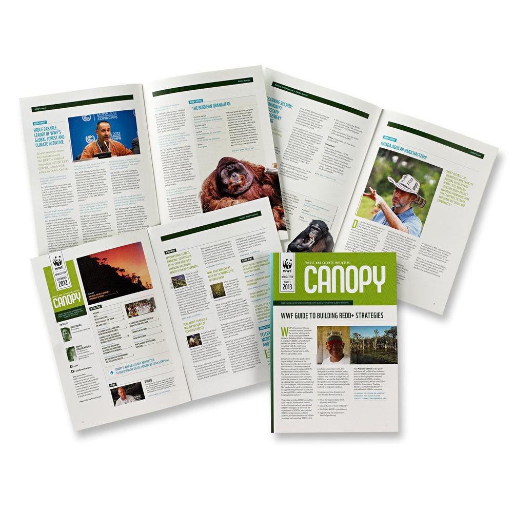 Canopy –  Newsletter