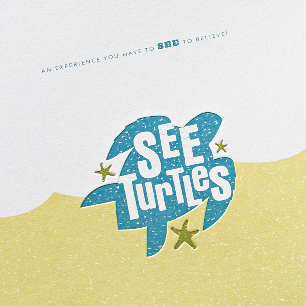 SEE Turtles – Marketing Kit