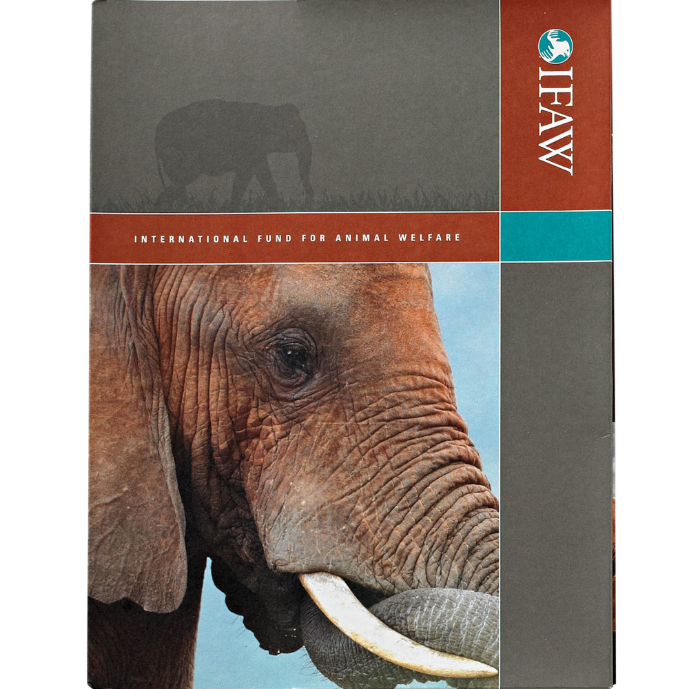 elephant-folder.jpg