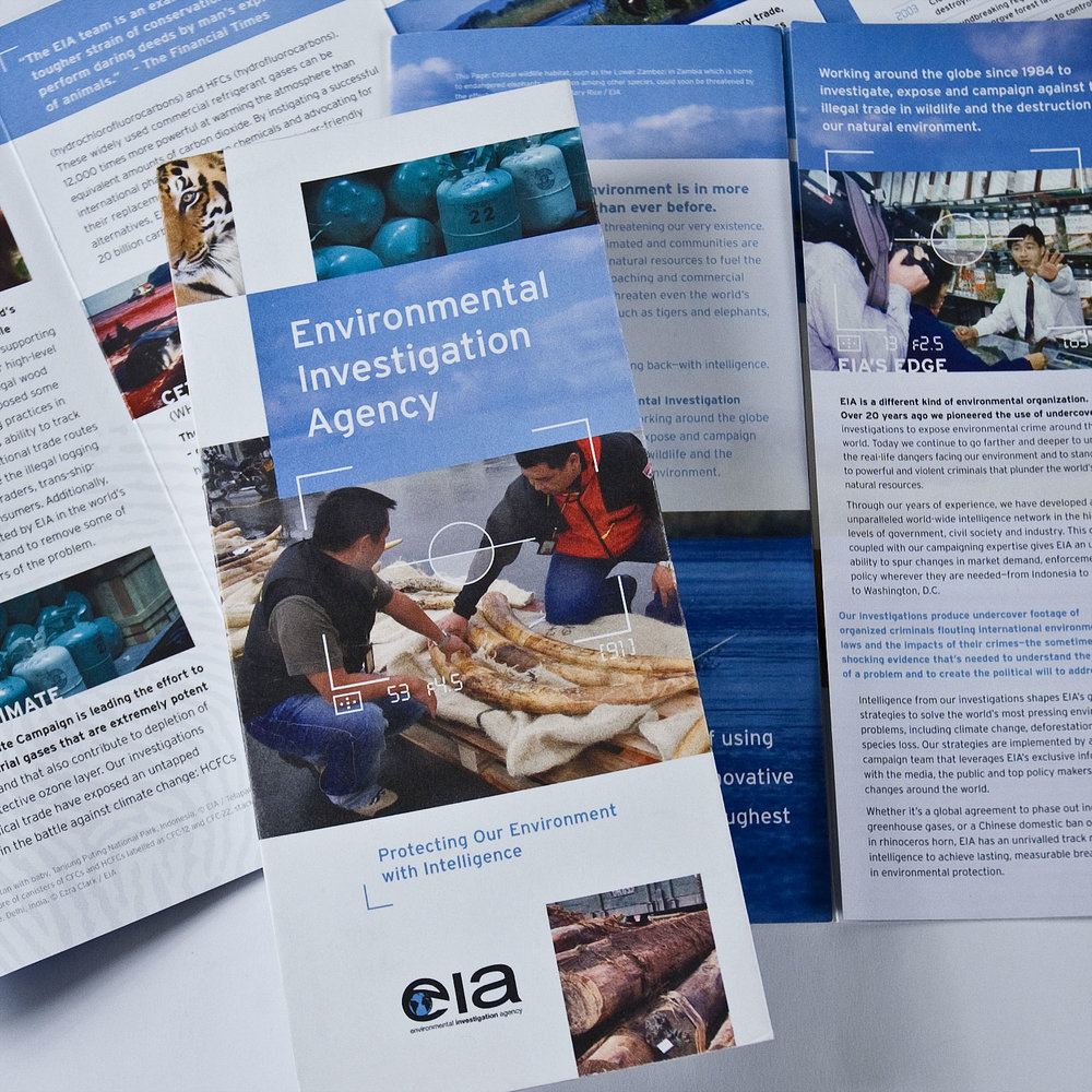 eia-brochure.jpg