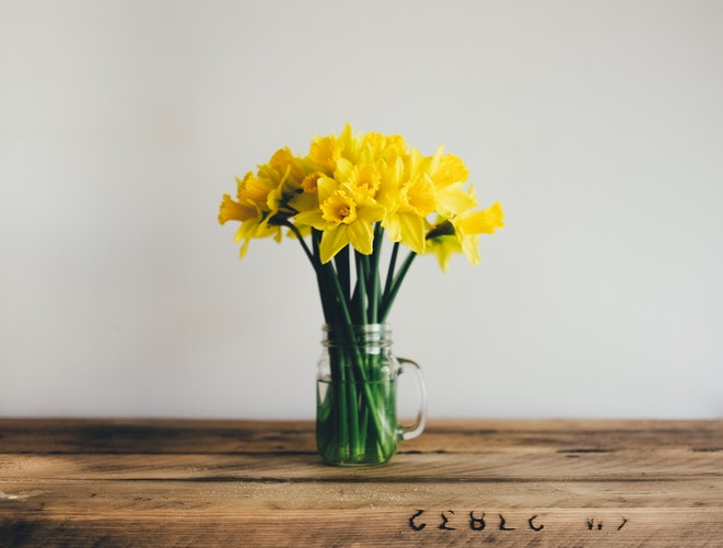 Spring cleaning finances - daffodils.jpg