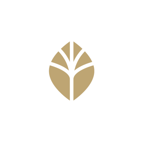 Seed to Oaks logo.png