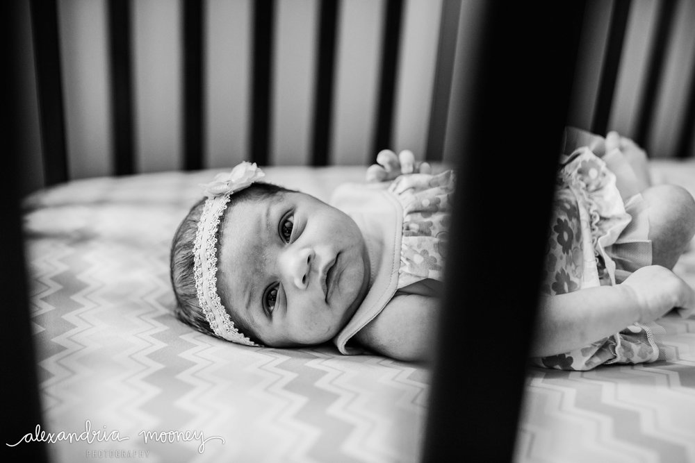 Callie_Newborn_WATERMARKED-34.jpg