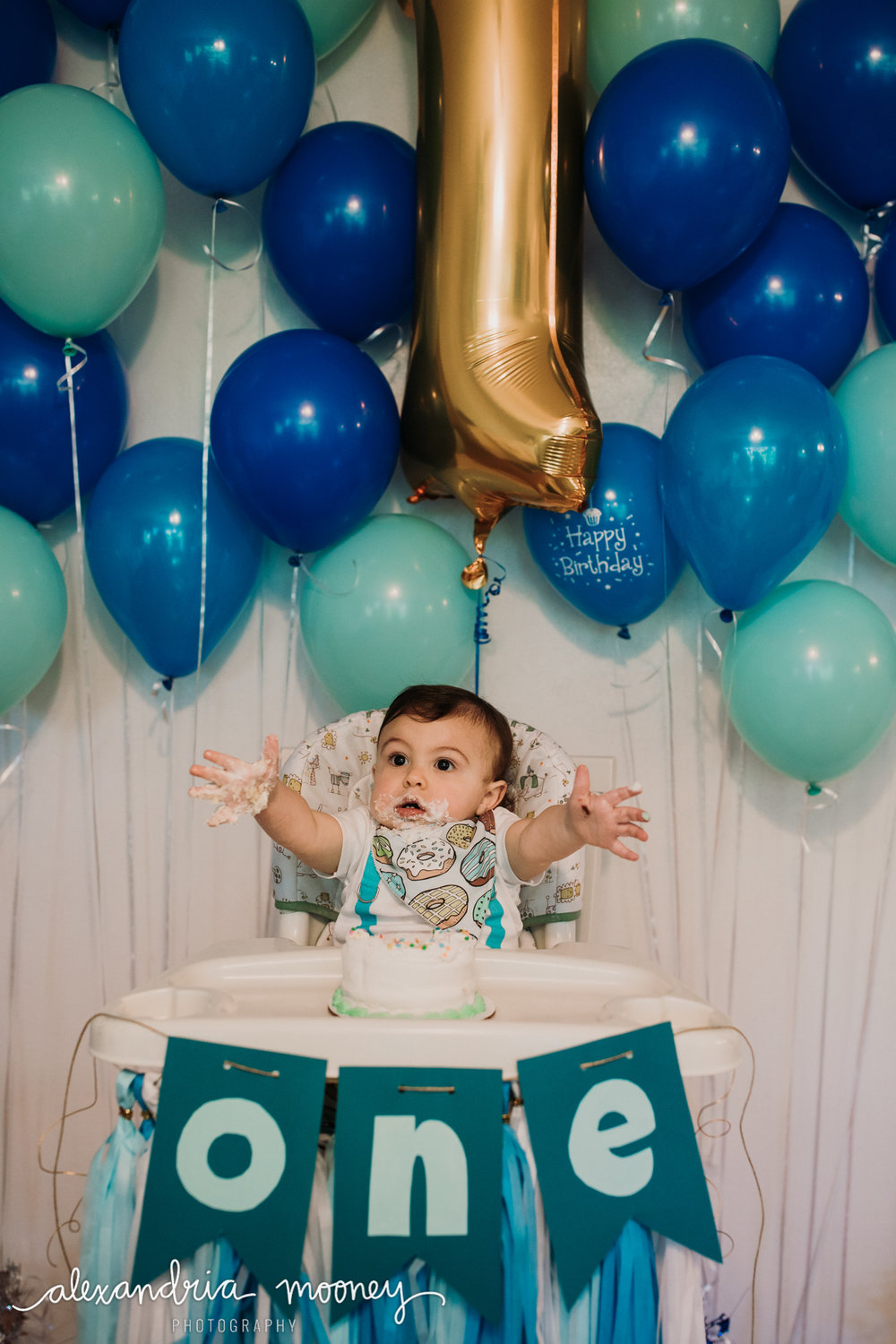 OliverFirstBirthday_Watermarked-4.jpg