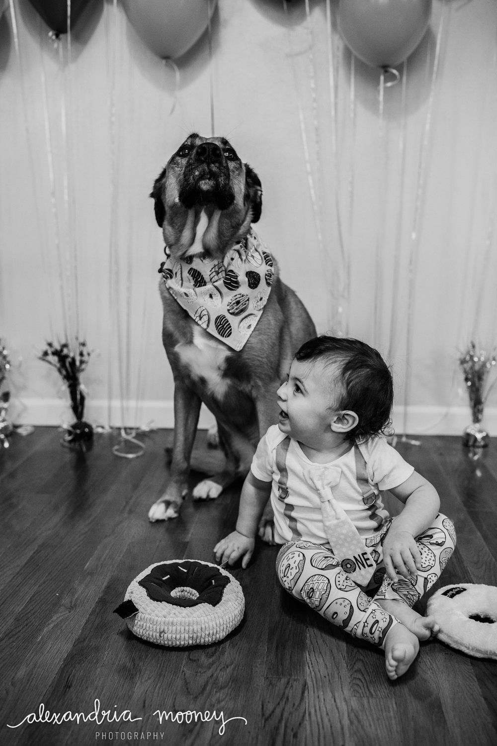 OliverFirstBirthday_Watermarked-31.jpg