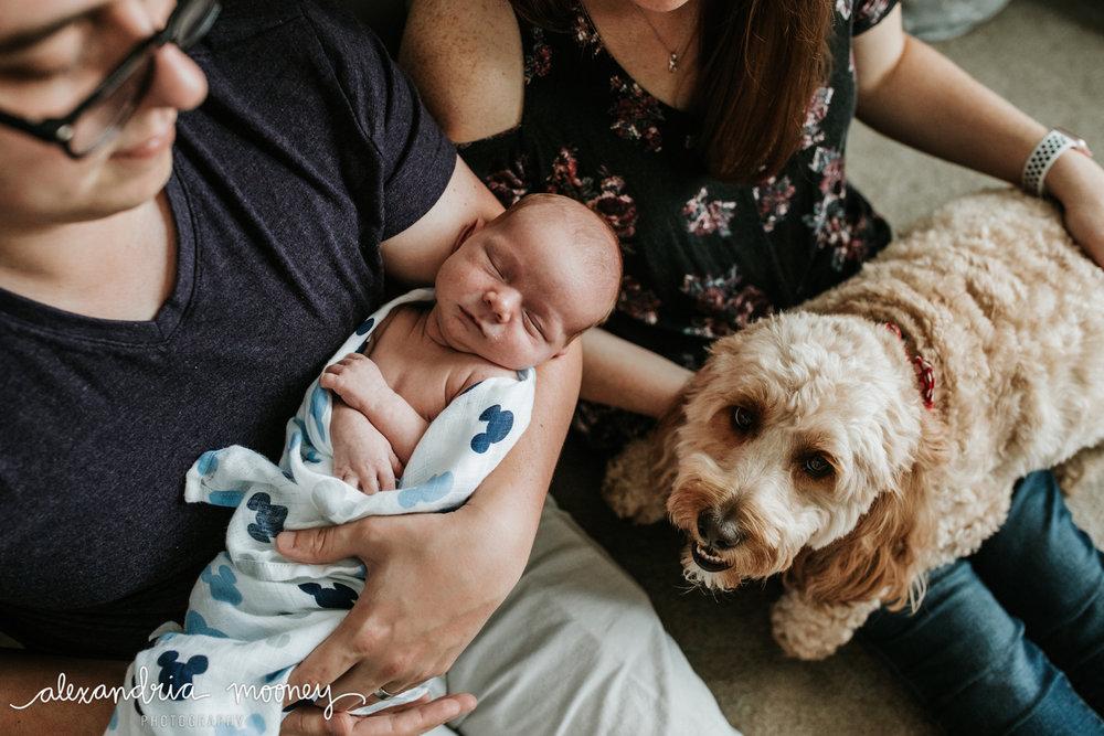 Oliver_newborn_WATERMARKED-1.jpg