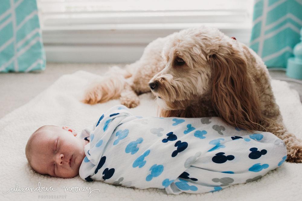 Oliver_newborn_WATERMARKED-4.jpg